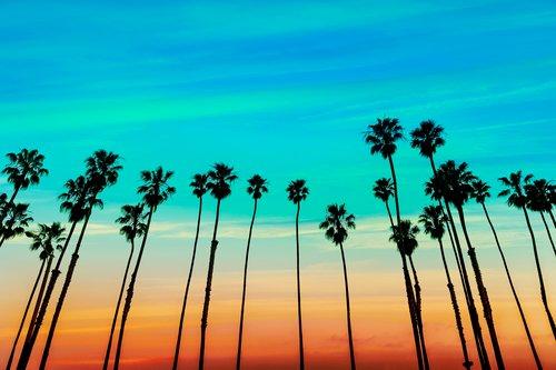 Choosing the Right California Drug Rehab Programs For You